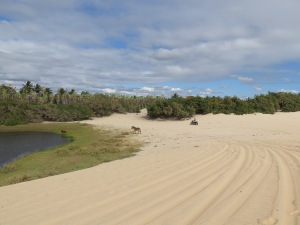The lake in the dunes