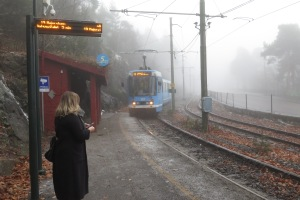 Tram emerges from the fog: Ekeberg Park